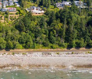 """Photo 33: 13576 13A Avenue in Surrey: Crescent Bch Ocean Pk. House for sale in """"Waterfront Ocean Park"""" (South Surrey White Rock)  : MLS®# R2606247"""