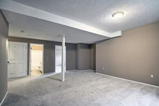 Photo 30: 379 Coventry Road NE in Calgary: Coventry Hills Detached for sale : MLS®# A1148465