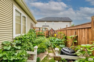 Photo 41: 467 Cranberry Circle SE in Calgary: Cranston Detached for sale : MLS®# A1132288