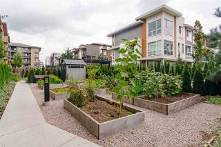"""Photo 23: 306 20829 77A Avenue in Langley: Willoughby Heights Condo for sale in """"The Wex"""" : MLS®# R2509468"""