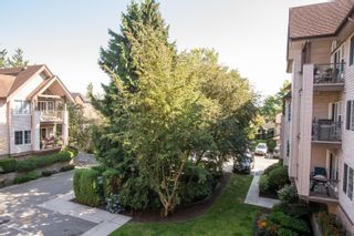 "Photo 16: 214 4745 54A Street in Delta: Delta Manor Condo for sale in ""ADLINGTON COURT"" (Ladner)  : MLS®# R2607048"