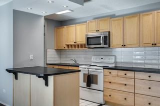 Photo 9: 307 903 19 Avenue SW in Calgary: Lower Mount Royal Apartment for sale : MLS®# A1152500