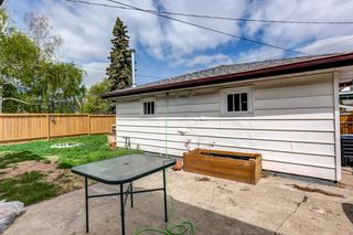 Photo 29: 4030 117 Avenue in Edmonton: Zone 23 House for sale : MLS®# E4246156