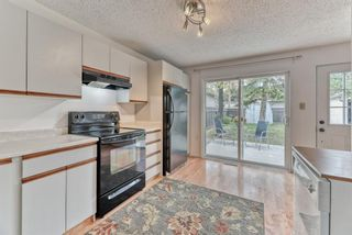 Photo 10: 8815 36 Avenue NW in Calgary: Bowness Detached for sale : MLS®# A1151045