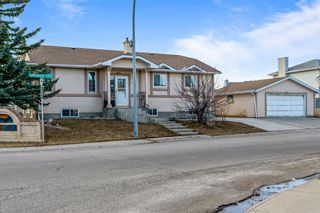 Main Photo: 92 Applewood Drive SE in Calgary: Applewood Park Detached for sale : MLS®# A1085201