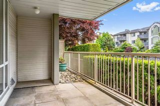 """Photo 8: 114 19122 122 Avenue in Pitt Meadows: Central Meadows Condo for sale in """"EDGEWOOD MANOR"""" : MLS®# R2462915"""