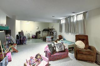 Photo 32: 1711 65 Street NE in Calgary: Pineridge Detached for sale : MLS®# A1038776
