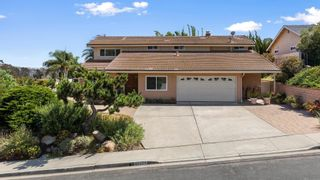 Photo 1: House for sale : 6 bedrooms : 13224 Mango Dr in Del Mar