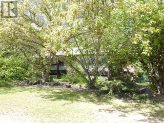 Photo 5: 109063 Township Road  175 in High Level: Vacant Land for sale : MLS®# A1091720