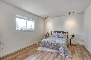 Photo 23: 135 Doverglen Place SE in Calgary: Dover Detached for sale : MLS®# A1058125