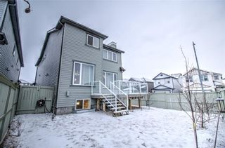 Photo 33: 6 COPPERPOND Court SE in Calgary: Copperfield Detached for sale : MLS®# C4292928