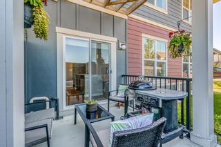 Photo 35: 1106 428 Nolan Hill Drive NW in Calgary: Nolan Hill Row/Townhouse for sale : MLS®# A1053774