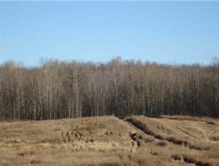 Photo 3: 53079 RR 215: Rural Strathcona County Rural Land/Vacant Lot for sale : MLS®# E4226476