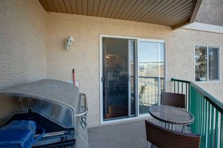Photo 28: 303 1833 11 Avenue SW in Calgary: Sunalta Apartment for sale : MLS®# A1083577