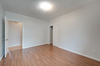 Photo 9: 12123 61 Street NW in Edmonton: House for sale : MLS®# E4166111