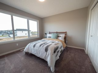 Photo 23: 2619 200 Street in Edmonton: Zone 57 House for sale : MLS®# E4252243