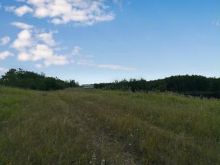 Photo 1: SW 17-44-09 W4: Land Only for sale (MD of Wainwright)  : MLS®# A1029195