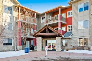 Photo 28: 1316 2370 Bayside Road SW: Airdrie Apartment for sale : MLS®# A1060422