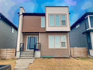 Photo 2: 47 Cornerstone Passage NE in Calgary: Cornerstone Detached for sale : MLS®# A1087151