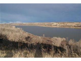 Photo 17: Scrivener Acreage: Hague Acreage for sale (Saskatoon NW)  : MLS®# 393157