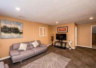 Photo 33: 25 Millbank Bay SW in Calgary: Millrise Detached for sale : MLS®# A1072623