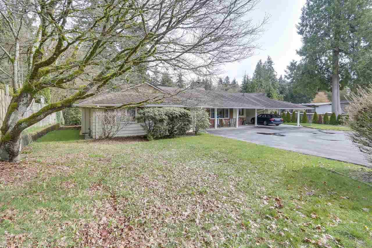 "Main Photo: 892 MARGAREE Place in West Vancouver: Cedardale House for sale in ""Cedardale"" : MLS®# R2256348"