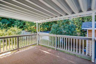 Photo 14: 20208 116B Avenue in Maple Ridge: Southwest Maple Ridge House for sale : MLS®# R2116409
