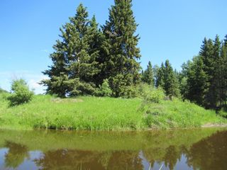 Photo 38: 391043 Range Road 5-0 Road: Condor Agriculture for sale : MLS®# A1122824
