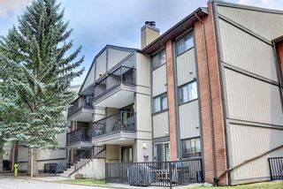 Photo 33: 3312 13045 6 Street SW in Calgary: Canyon Meadows Apartment for sale : MLS®# A1126662