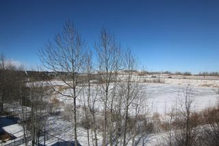 Photo 2:  in Calgary: Royal Oak Detached for sale : MLS®# A1087118