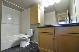 Photo 23: 104 328 WOODBRIDGE Way: Sherwood Park Condo for sale : MLS®# E4225553