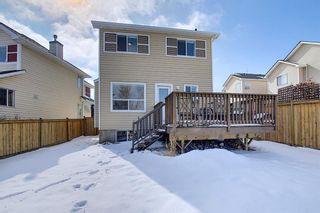 Photo 30: 8050 Cougar Ridge Avenue SW in Calgary: Cougar Ridge Detached for sale : MLS®# A1086760