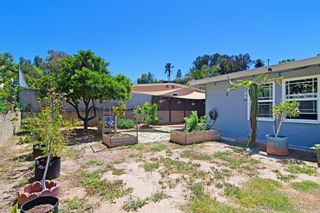 Photo 23: COLLEGE GROVE House for sale : 3 bedrooms : 3831 Marron St in San Diego
