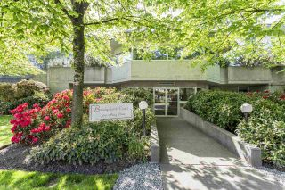 Photo 1: 104 3051 AIREY Drive in Richmond: West Cambie Condo for sale : MLS®# R2022391