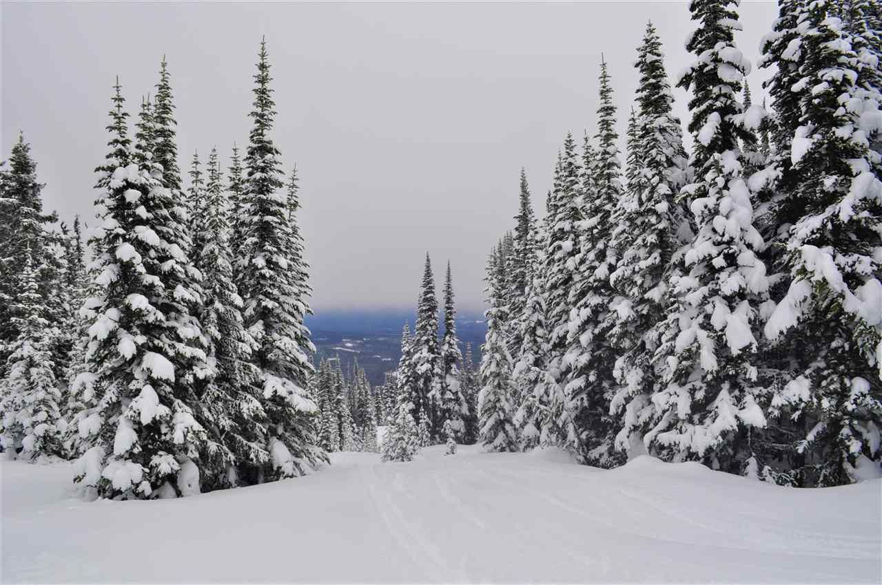 """Main Photo: 217 PRAIRIE Road in Smithers: Smithers - Rural Land for sale in """"Hudson Bay Mountain Resort"""" (Smithers And Area (Zone 54))  : MLS®# R2545464"""