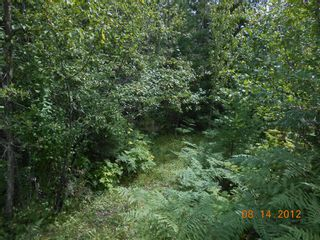 Photo 5: 6471 Lindsay Road # Site 1 in Magna Bay: Land Only for sale