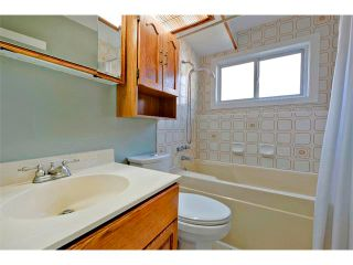 Photo 21: 2931 LATHOM Crescent SW in Calgary: Lakeview House for sale : MLS®# C4006222