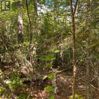 Photo 2: Lot 64 Forest Point Loop in Labelle: Vacant Land for sale : MLS®# 202125067