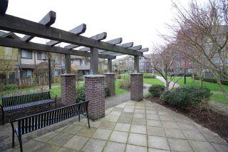 """Photo 14: 115 15322 101 Avenue in Surrey: Guildford Condo for sale in """"Ascada"""" (North Surrey)  : MLS®# R2135574"""