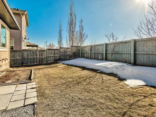Photo 31: 236 Chapalina Heights SE in Calgary: Chaparral Detached for sale : MLS®# A1078457