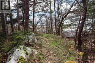 Photo 7: Lot St Catherines River Road in Port Joli: Vacant Land for sale : MLS®# 202111302