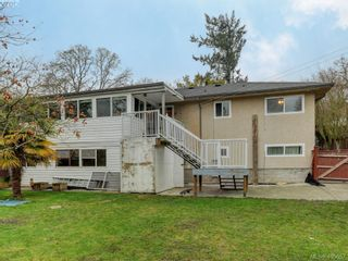 Photo 21: 4055 Saanich Rd in VICTORIA: SE High Quadra House for sale (Saanich East)  : MLS®# 806101