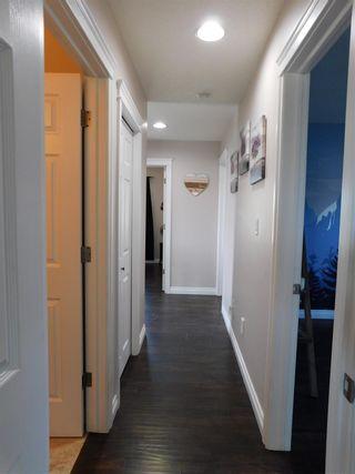 Photo 24: 11419 167A Avenue in Edmonton: Zone 27 House for sale : MLS®# E4247450