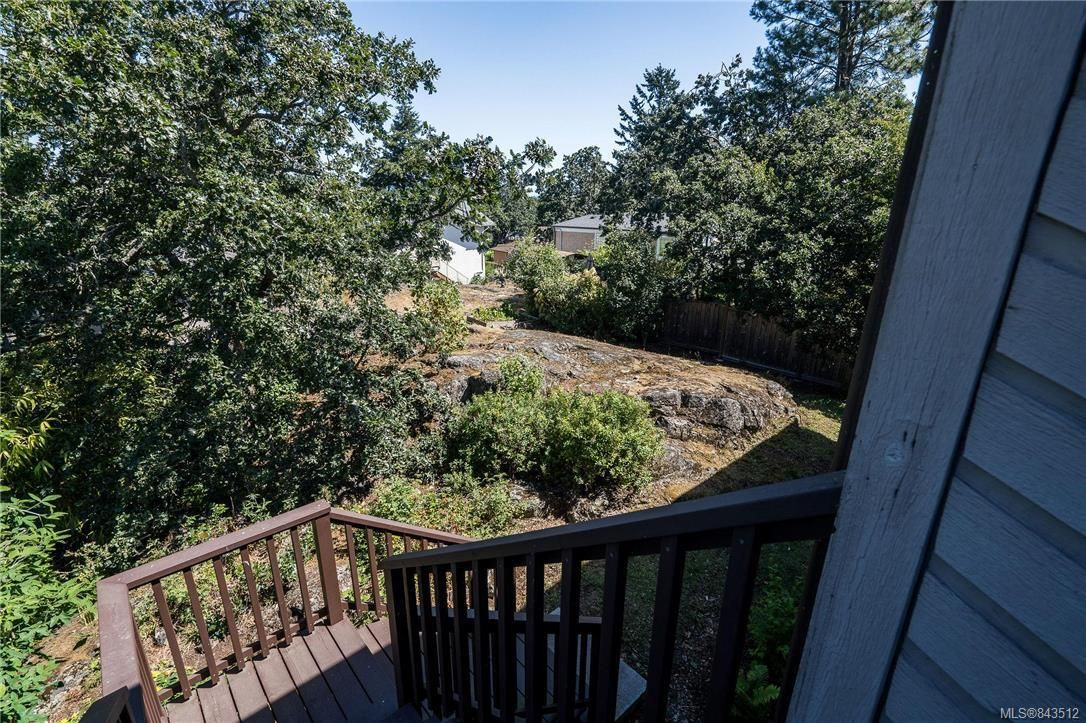 Photo 18: Photos: 950 Easter Rd in Saanich: SE Quadra House for sale (Saanich East)  : MLS®# 843512