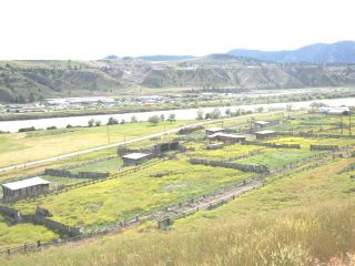 Photo 4: 2511 E SHUSWAP ROAD in : South Thompson Valley Lots/Acreage for sale (Kamloops)  : MLS®# 135236