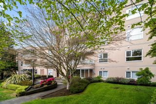 Photo 19: 205 456 Linden Ave in : Vi Fairfield West Condo for sale (Victoria)  : MLS®# 874426