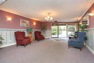 Photo 3: 306 1525 Hillside Ave in VICTORIA: Vi Oaklands Condo for sale (Victoria)  : MLS®# 782338