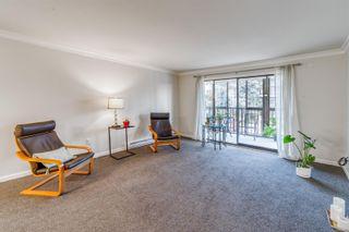 Photo 8: 305 1170 Rockland Ave in : Vi Rockland Condo for sale (Victoria)  : MLS®# 866972