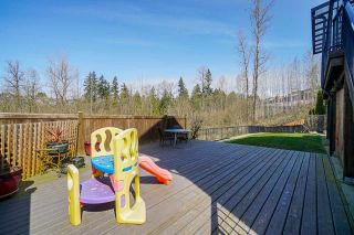 Photo 33: 23763 111A Avenue in Maple Ridge: Cottonwood MR House for sale : MLS®# R2562581