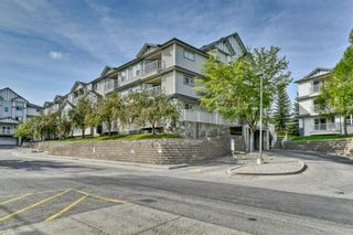 Main Photo: 311 11 Somervale View SW in Calgary: Somerset Apartment for sale : MLS®# A1146696